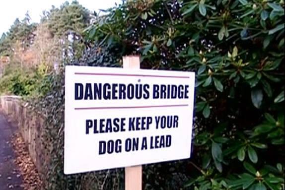 Most Psich Samobójców – O psach, które popełniają samobójstwo